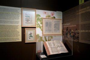 Panneaux explicatifs au musée de la frite (Frietmuseum) à Bruges