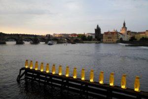 Pingouins jaunes sur la rive de la Vltava île Kampa Prague.