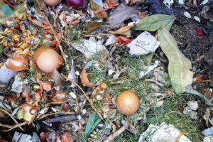 Compost fait-maison.