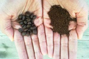 Grains de café dans une main, marc de café dans l'autre.