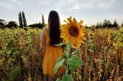 Photo d'une femme vêtue d'une robe jaune dans un champ de tournesols