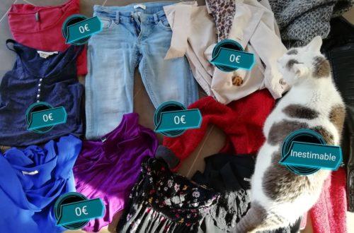 Ensemble de vêtements récupérés via le don pour un total de 0€