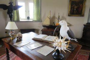 Cabinet de curiosités du château d'Hardelot