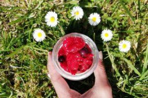 Pot de yaourt avec des fruits rouge